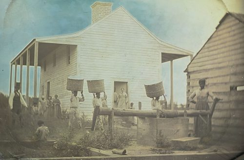 The Oldest-Known Photograph of Enslaved African Americans With Cotton