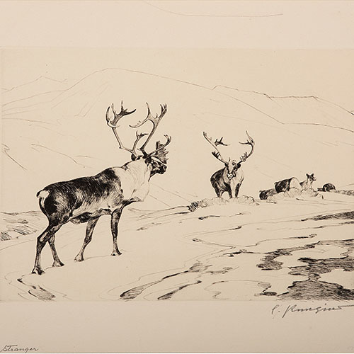 Carl Rungius (German, 1869-1959)